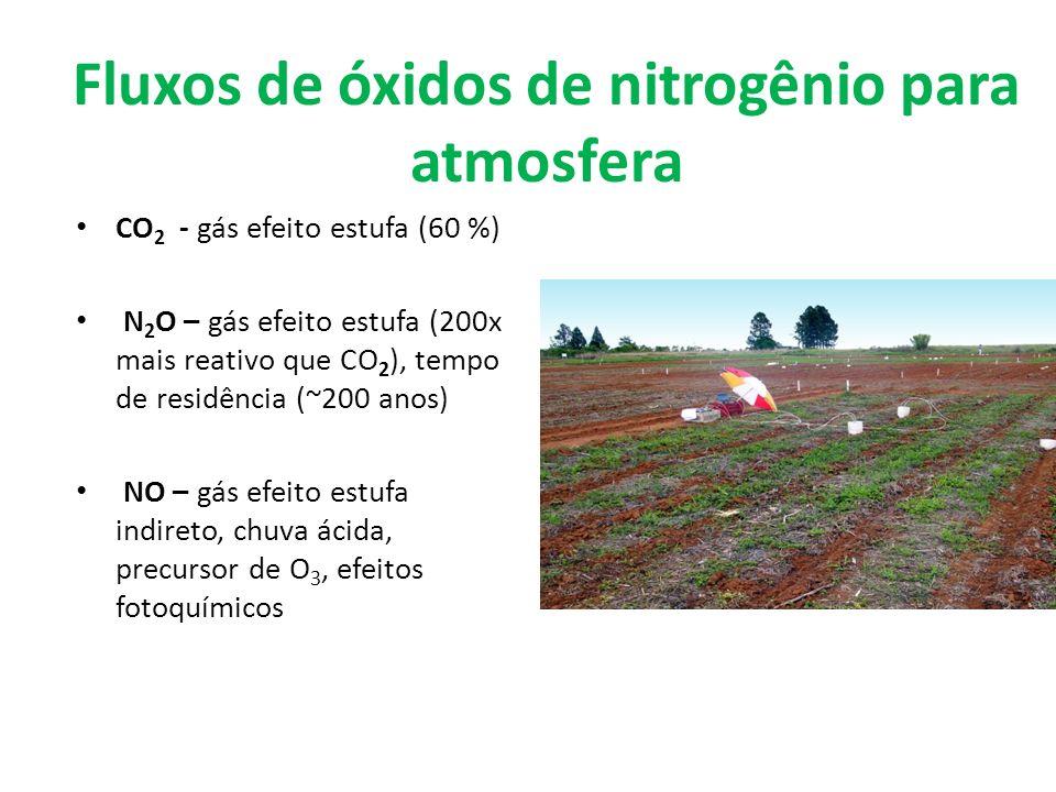 Fluxos de óxidos de nitrogênio para atmosfera