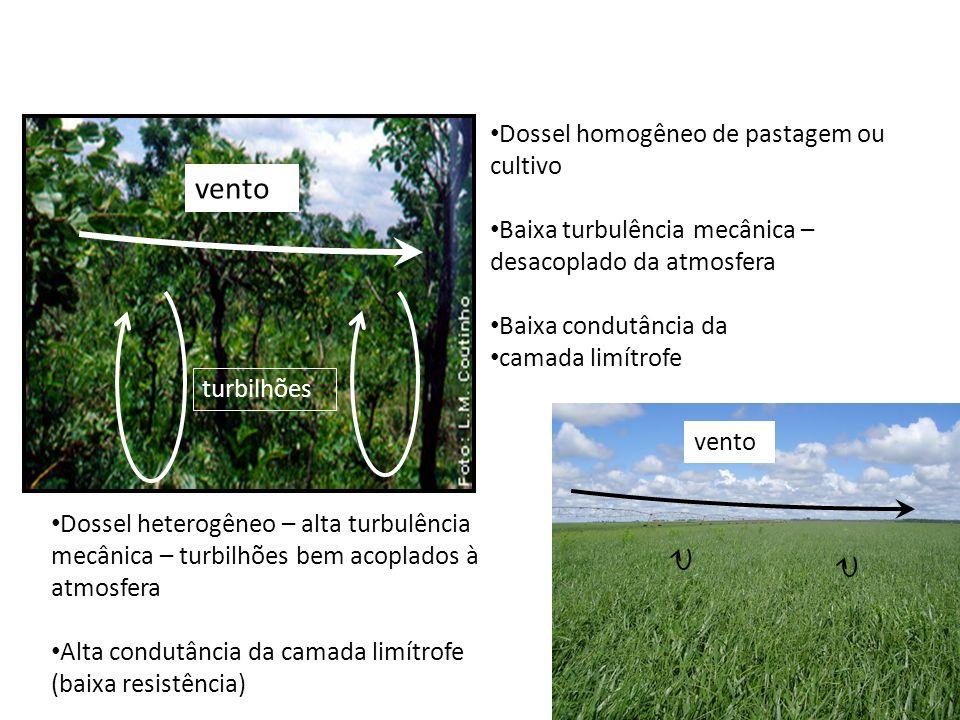 vento vento Dossel homogêneo de pastagem ou cultivo