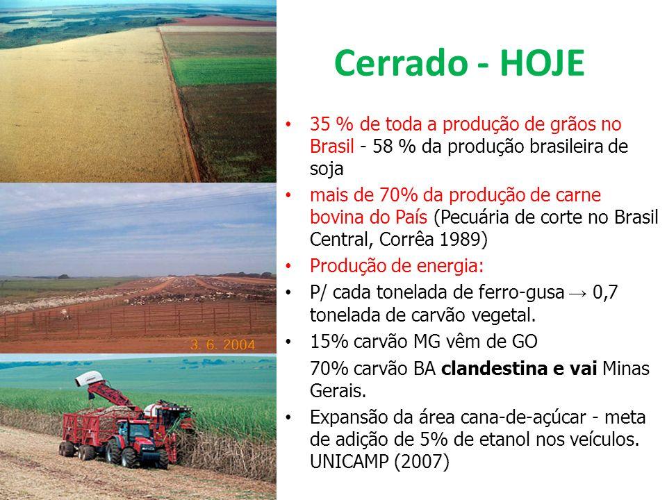 Cerrado - HOJE 35 % de toda a produção de grãos no Brasil - 58 % da produção brasileira de soja.
