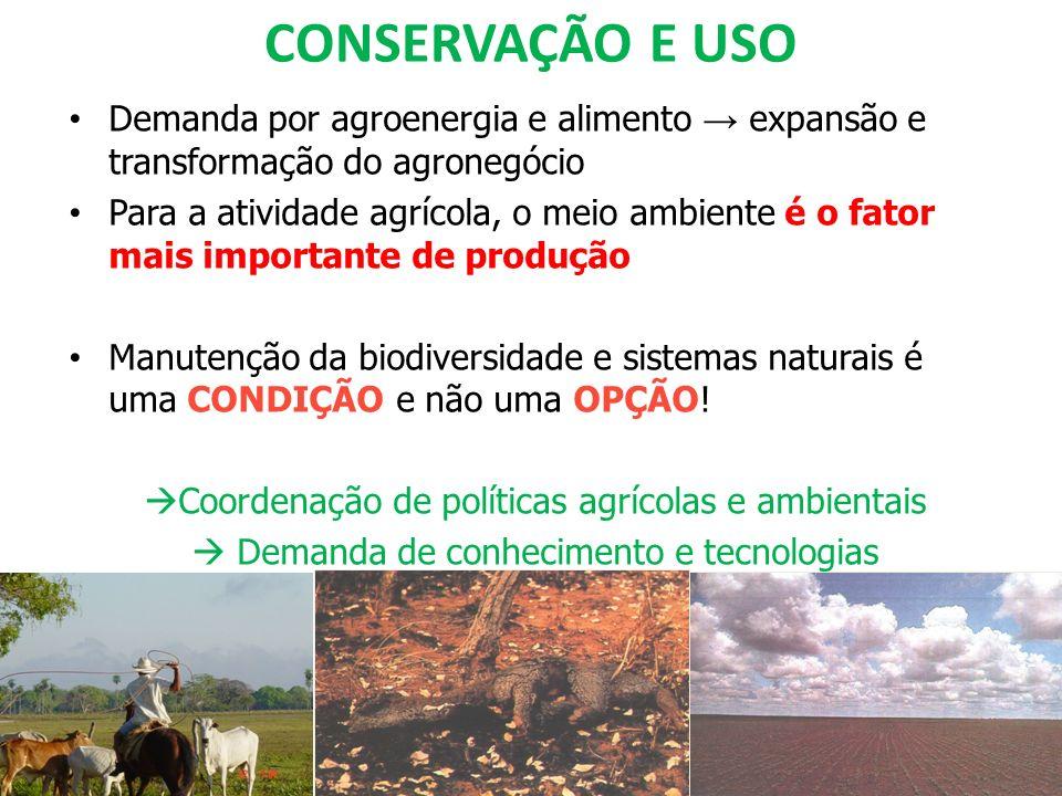 CONSERVAÇÃO E USO Demanda por agroenergia e alimento → expansão e transformação do agronegócio.