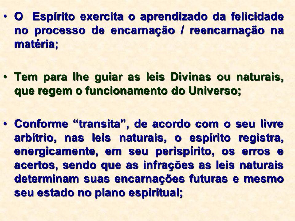 O Espírito exercita o aprendizado da felicidade no processo de encarnação / reencarnação na matéria;