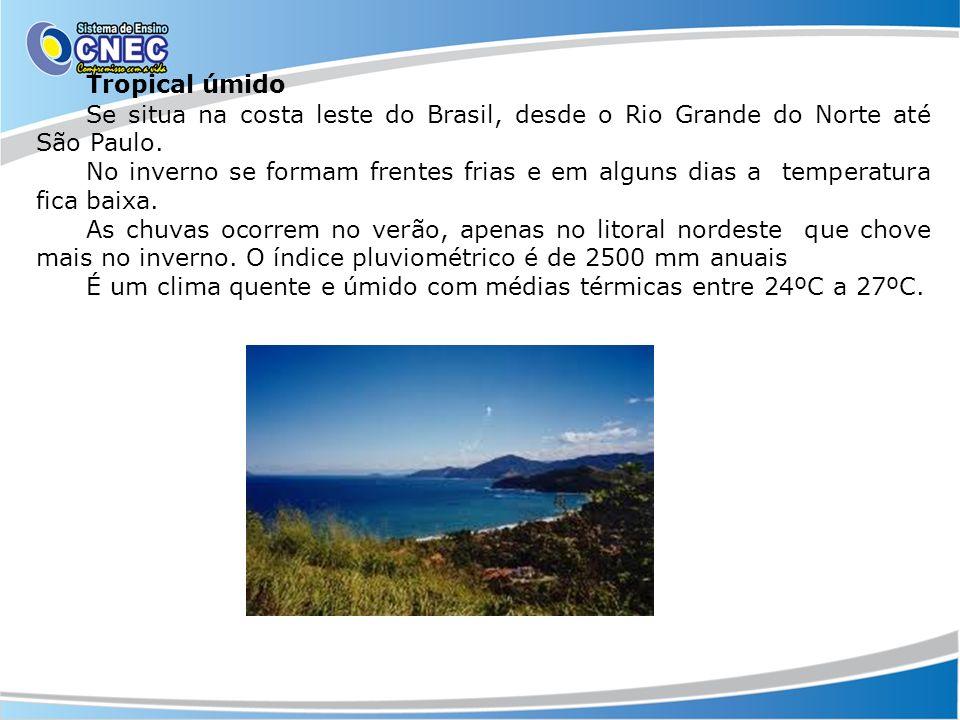 Tropical úmido Se situa na costa leste do Brasil, desde o Rio Grande do Norte até São Paulo.