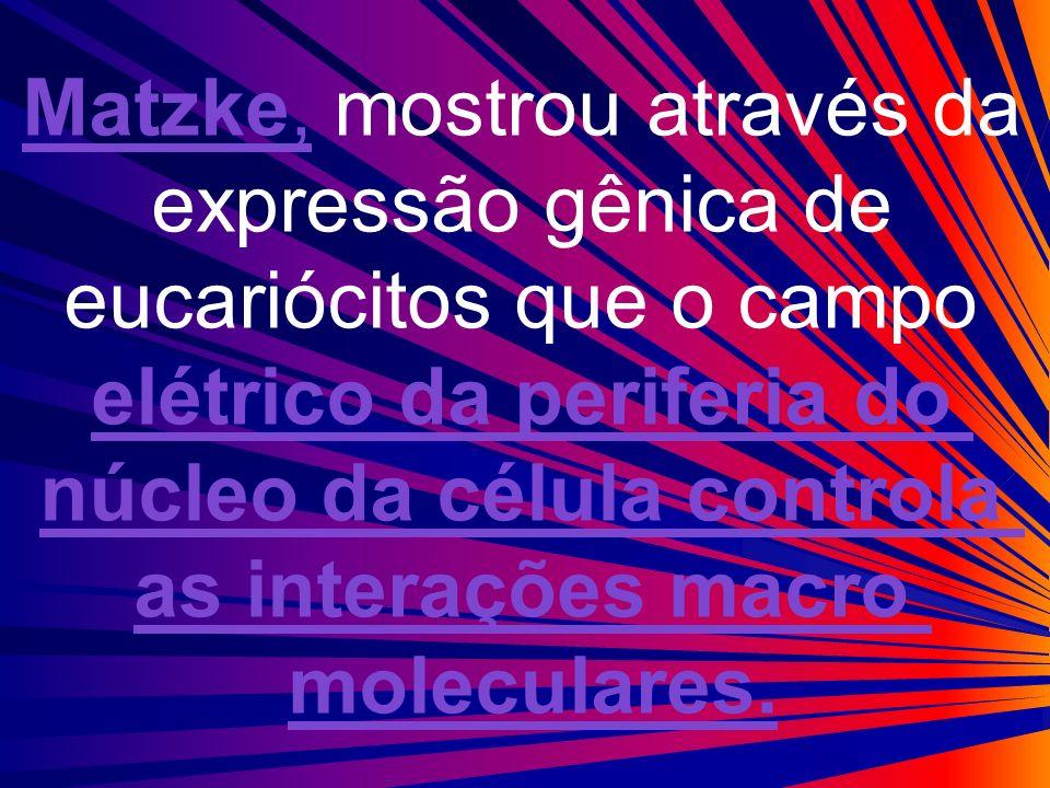 elétrico da periferia do núcleo da célula controla