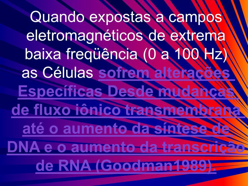 Quando expostas a campos eletromagnéticos de extrema
