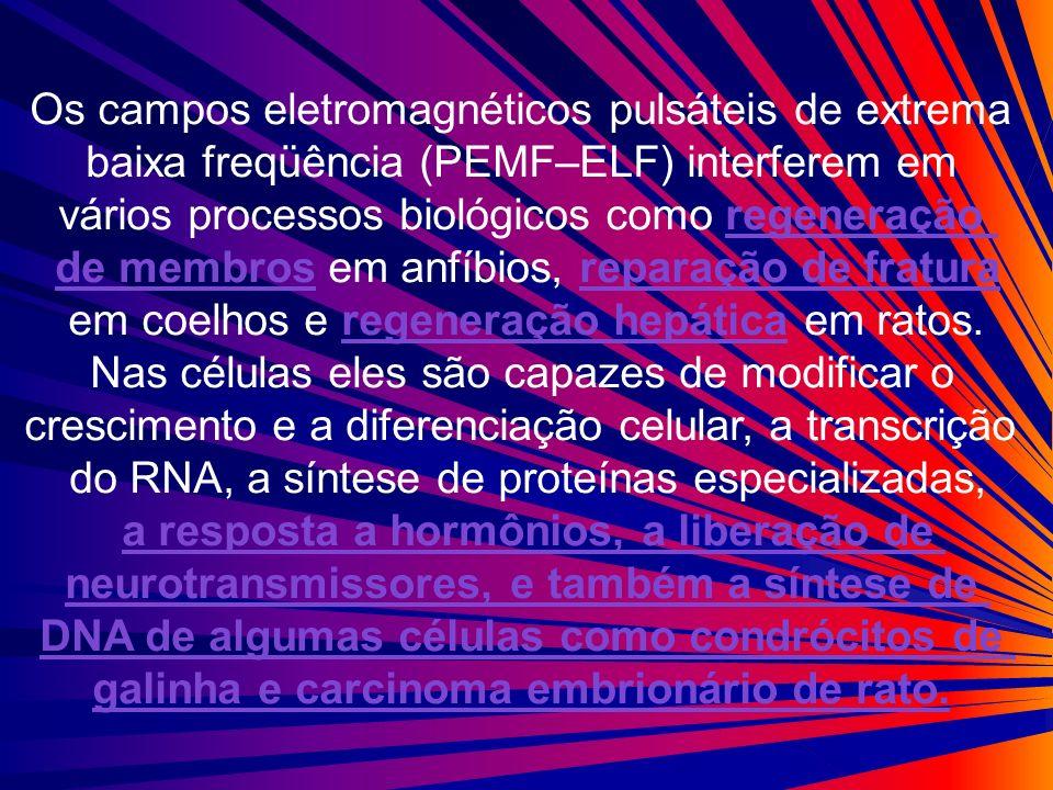 Os campos eletromagnéticos pulsáteis de extrema