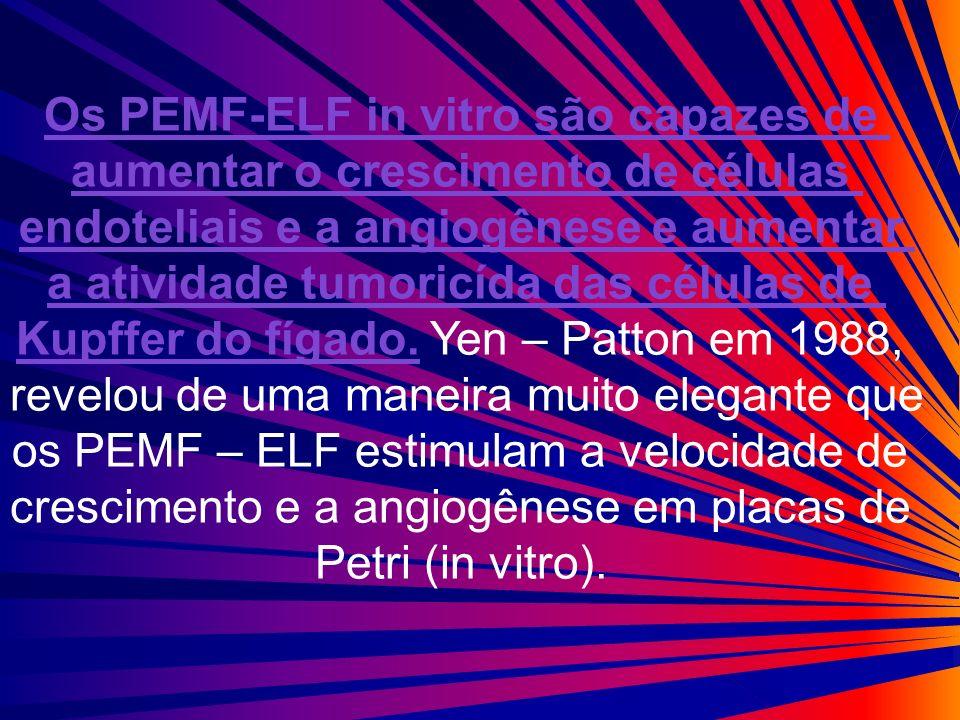 Os PEMF-ELF in vitro são capazes de aumentar o crescimento de células