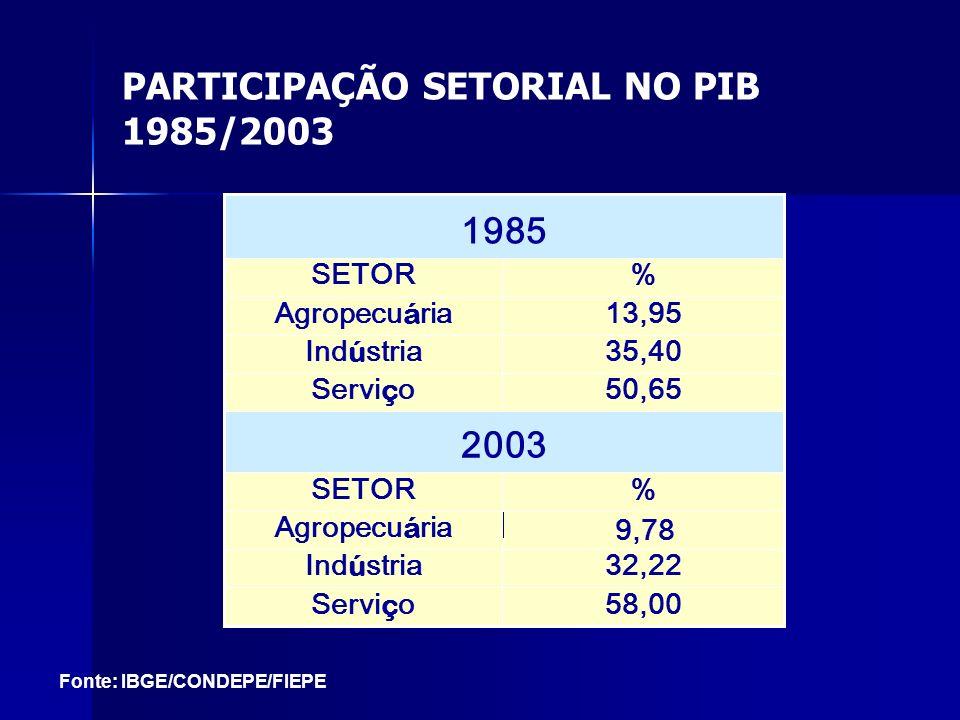 PARTICIPAÇÃO SETORIAL NO PIB 1985/2003