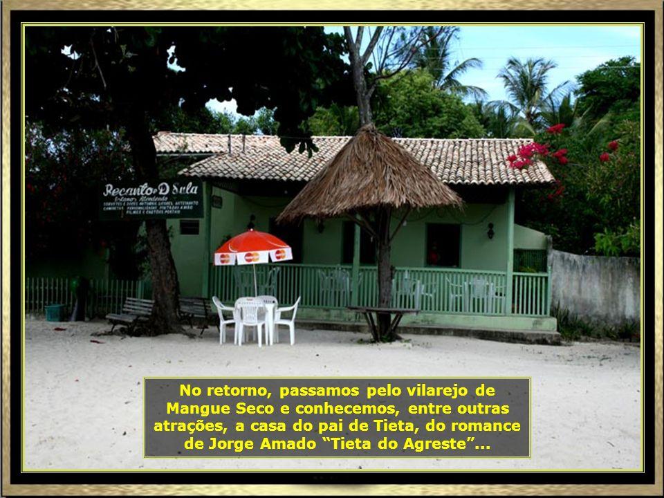 IMG_7982 - ARACAJU - CASA DO PAI DE TIETA EM MANGUE SECO-690