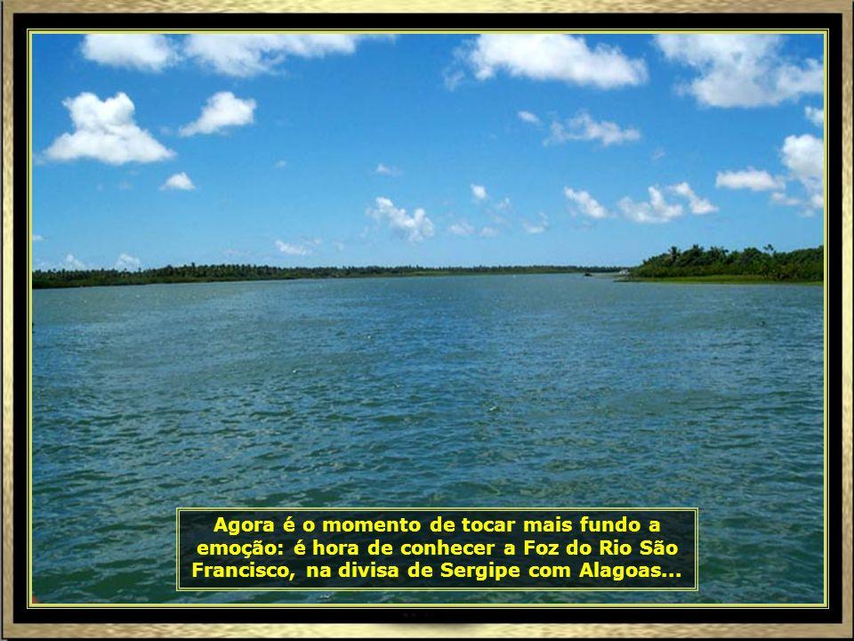 P0016982 - ARACAJU - RIO SÃO FRANCISCO RUMO À FOZ-690
