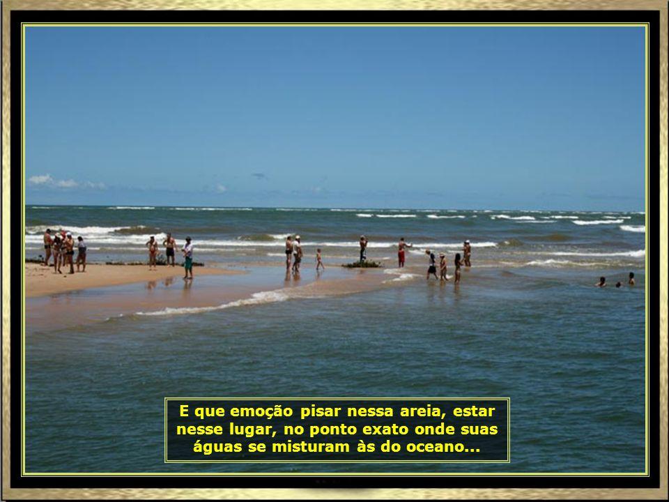 IMG_8120 - ARACAJU - ENCONTRO DO RIO SÃO FRANCISCO COM O MAR-690
