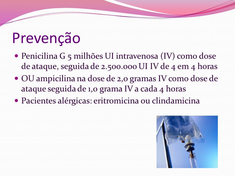 Prevenção Penicilina G 5 milhões UI intravenosa (IV) como dose de ataque, seguida de 2.500.000 UI IV de 4 em 4 horas.