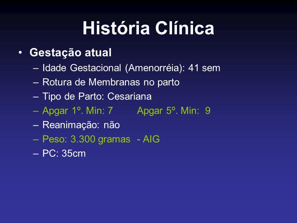 História Clínica Gestação atual Idade Gestacional (Amenorréia): 41 sem