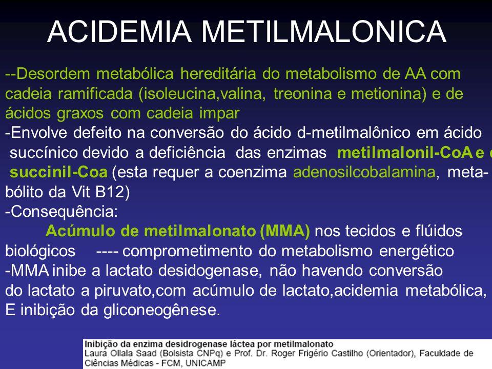 ACIDEMIA METILMALONICA
