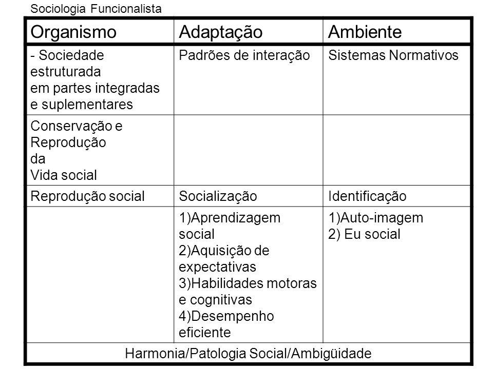 Harmonia/Patologia Social/Ambigüidade