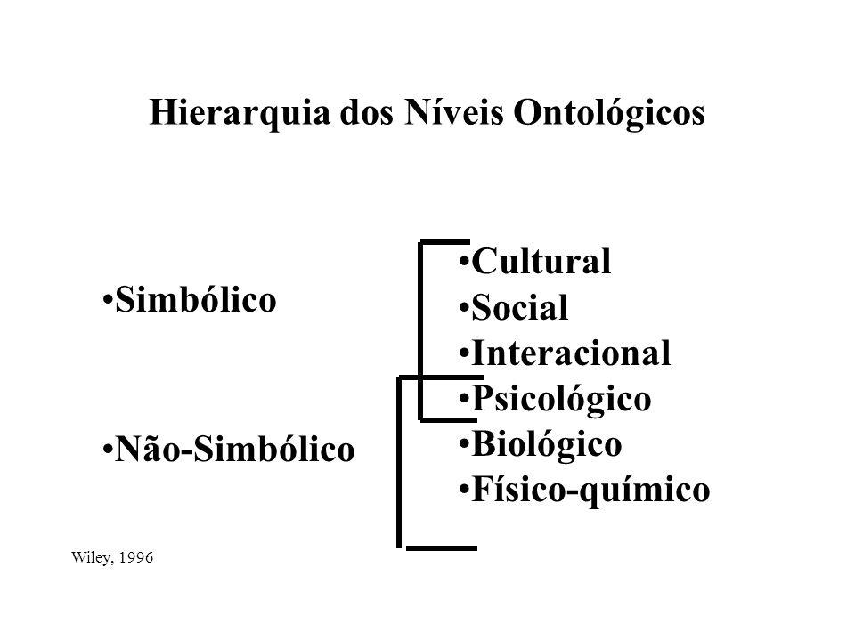 Hierarquia dos Níveis Ontológicos