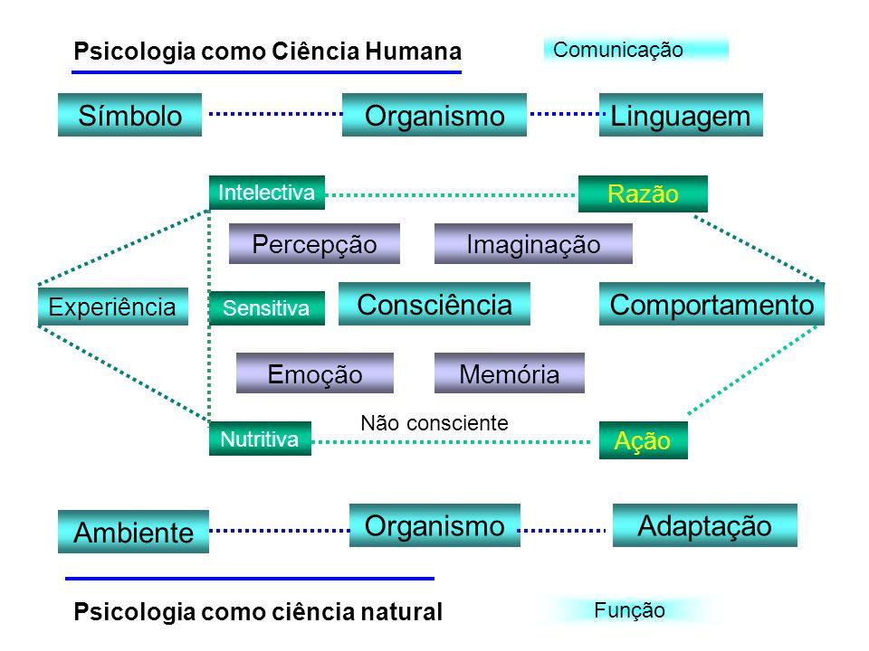 Símbolo Organismo Linguagem Consciência Comportamento Organismo