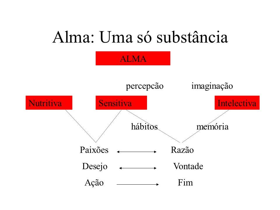 Alma: Uma só substância