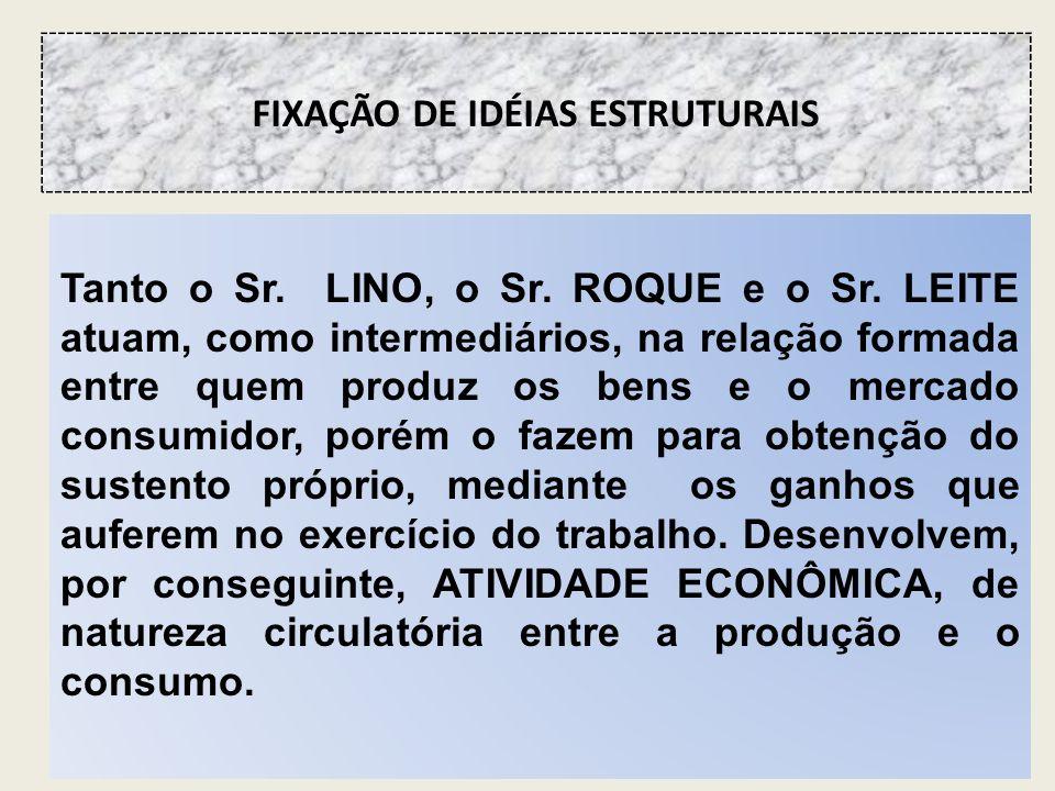 FIXAÇÃO DE IDÉIAS ESTRUTURAIS