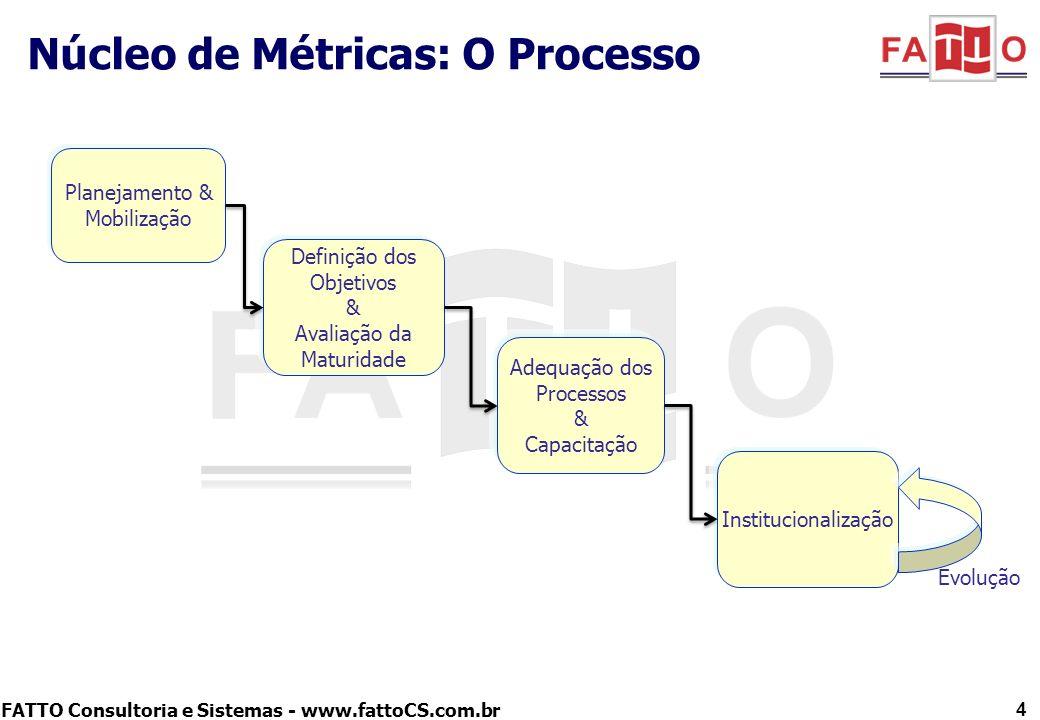 Núcleo de Métricas: O Processo