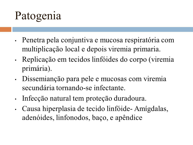 Patogenia Penetra pela conjuntiva e mucosa respiratória com multiplicação local e depois viremia primaria.