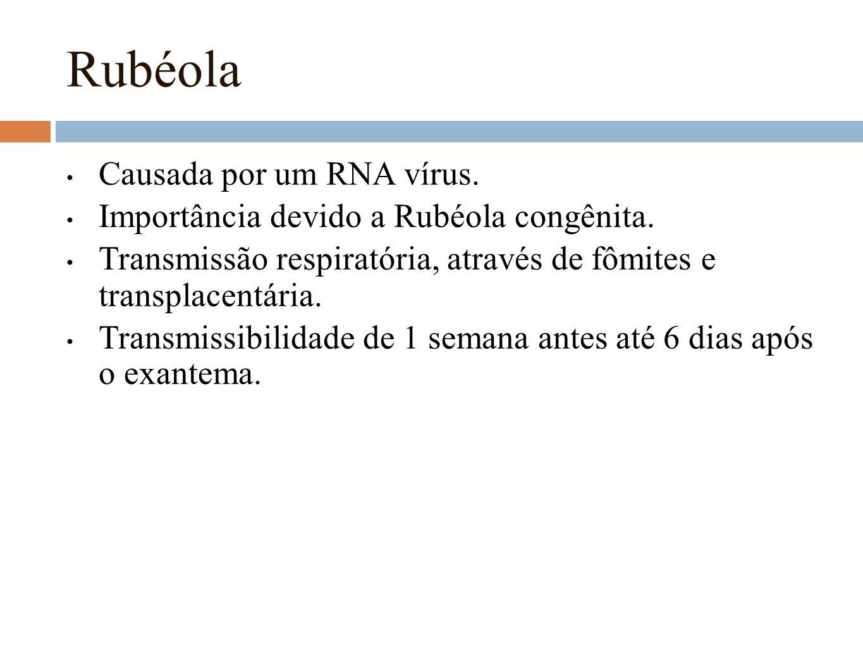 Rubéola Causada por um RNA vírus.