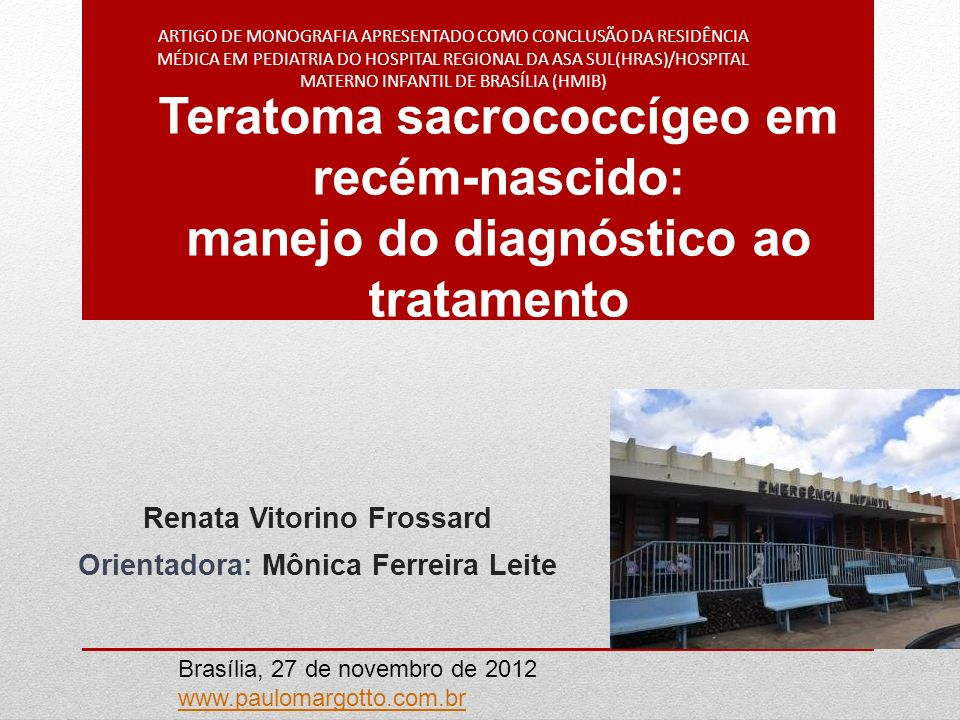 Renata Vitorino Frossard Orientadora: Mônica Ferreira Leite