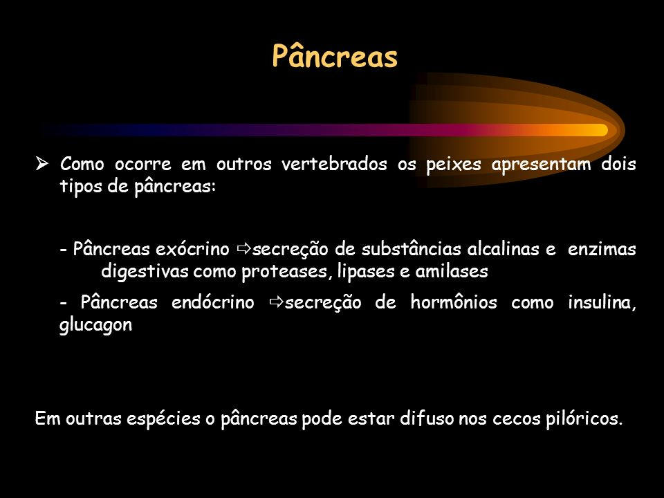 Pâncreas  Como ocorre em outros vertebrados os peixes apresentam dois tipos de pâncreas: