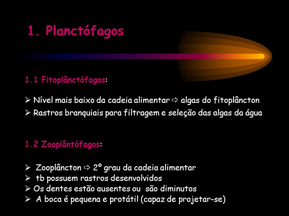 1. Planctófagos 1.1 Fitoplânctófagos: