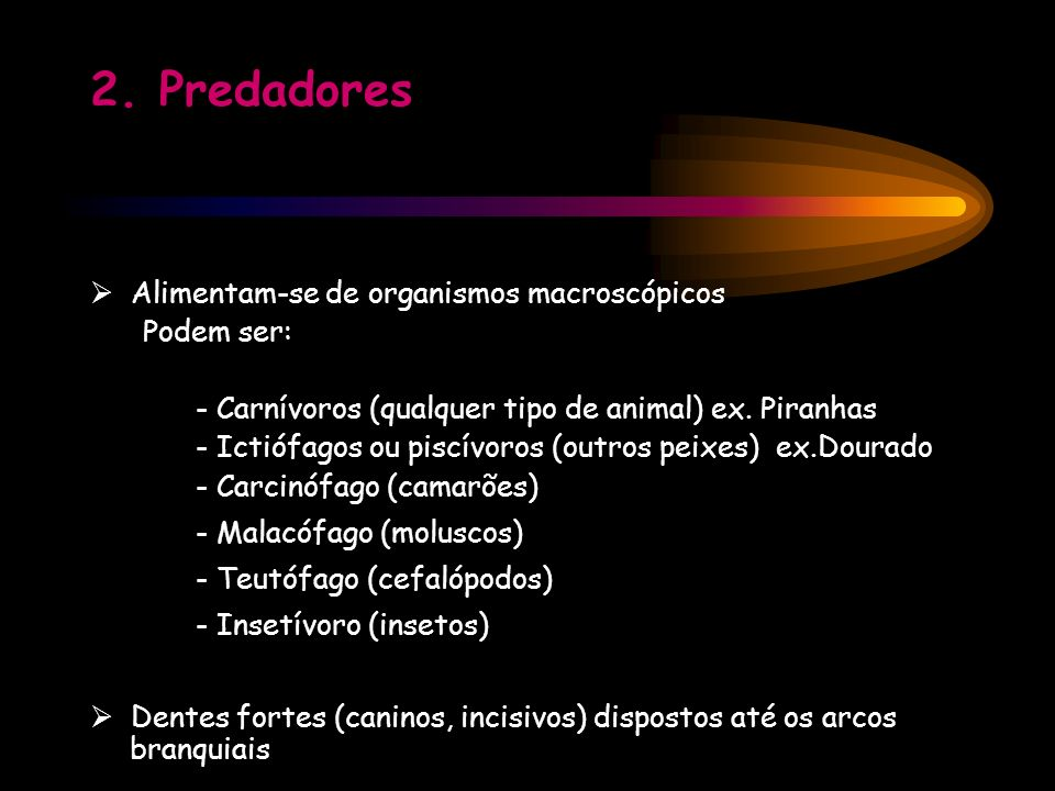 2. Predadores  Alimentam-se de organismos macroscópicos Podem ser: