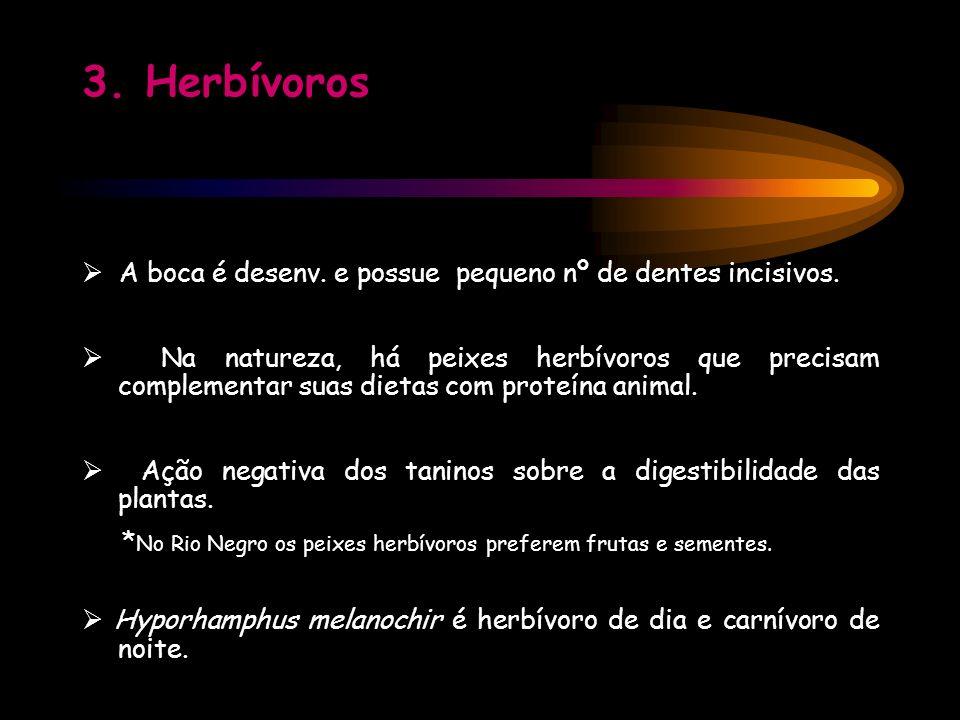 3. Herbívoros  A boca é desenv. e possue pequeno nº de dentes incisivos.