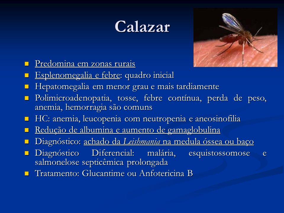 Calazar Predomina em zonas rurais