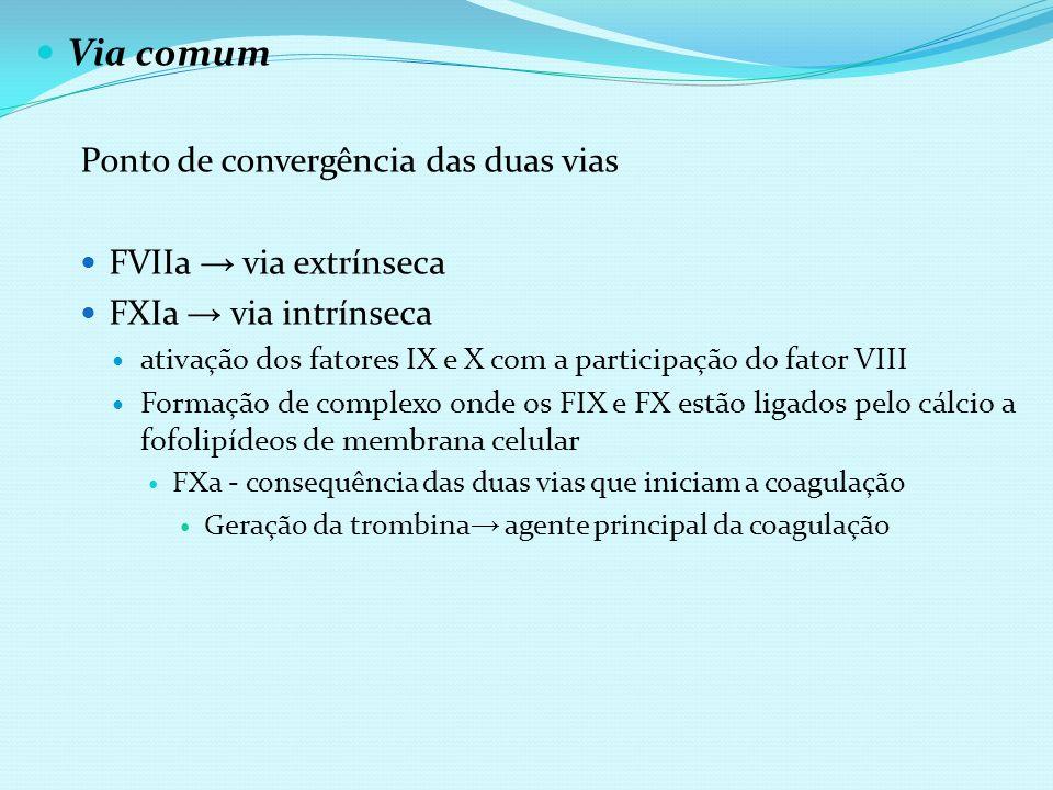 Via comum Ponto de convergência das duas vias FVIIa → via extrínseca