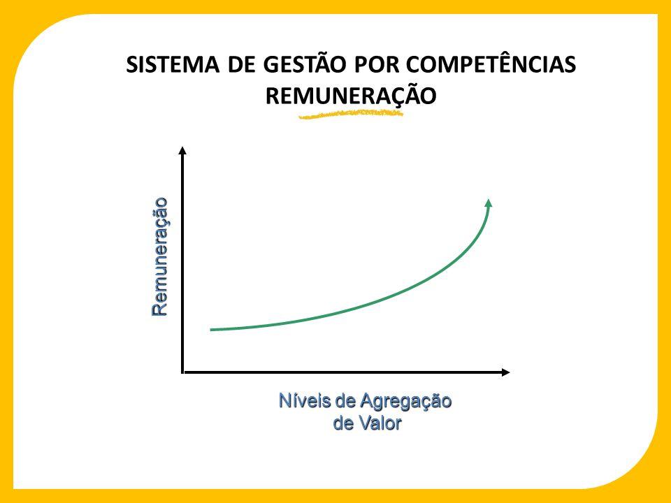 SISTEMA DE GESTÃO POR COMPETÊNCIAS REMUNERAÇÃO