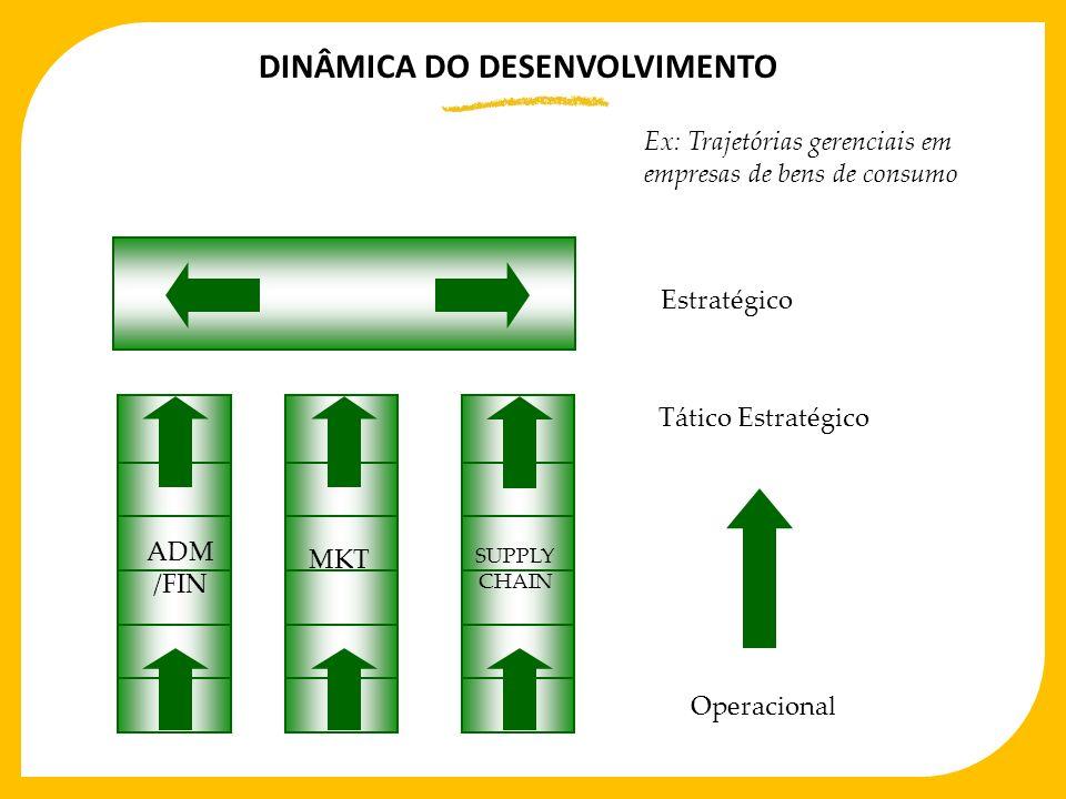 DINÂMICA DO DESENVOLVIMENTO