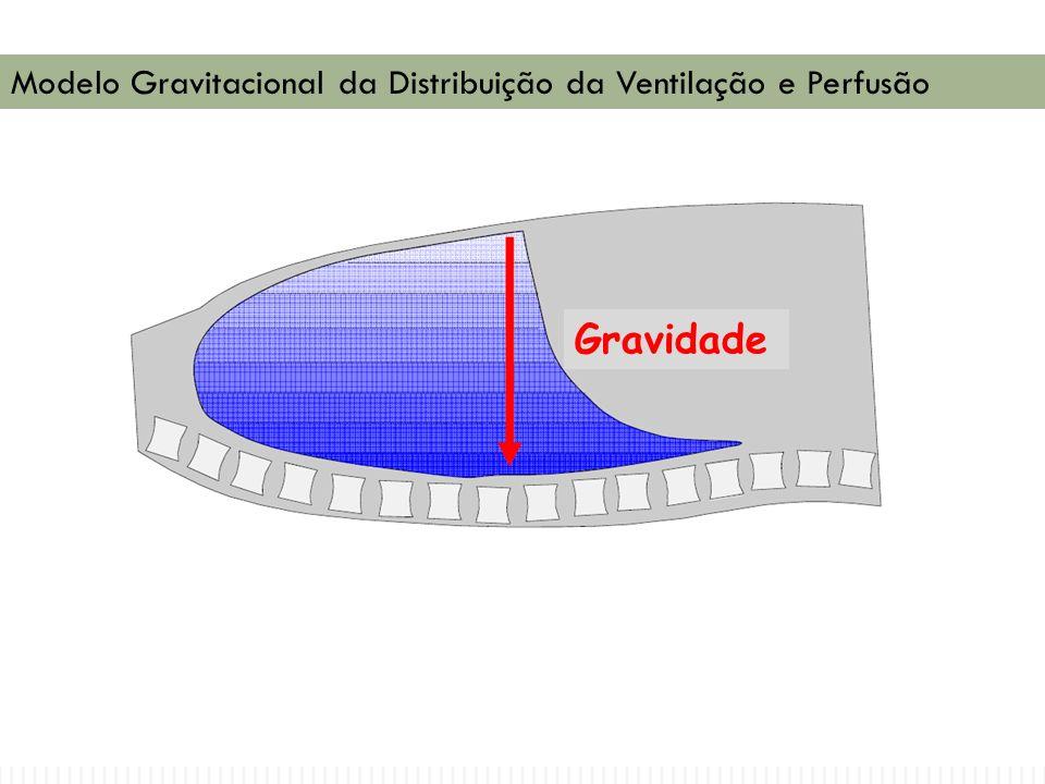 Modelo Gravitacional da Distribuição da Ventilação e Perfusão