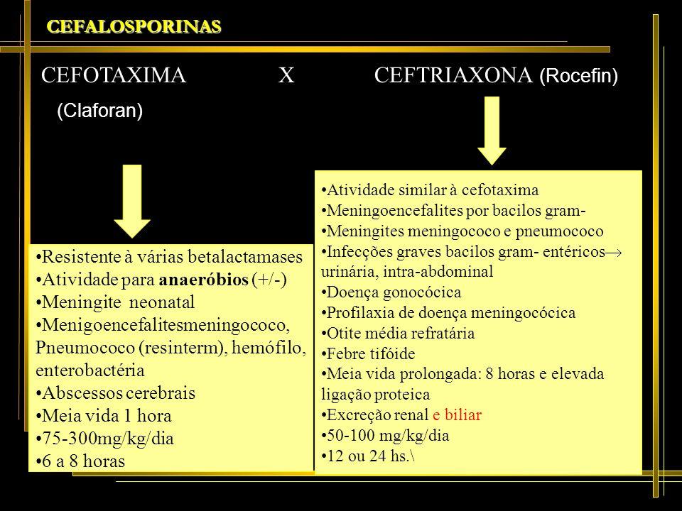 CEFOTAXIMA X CEFTRIAXONA (Rocefin)