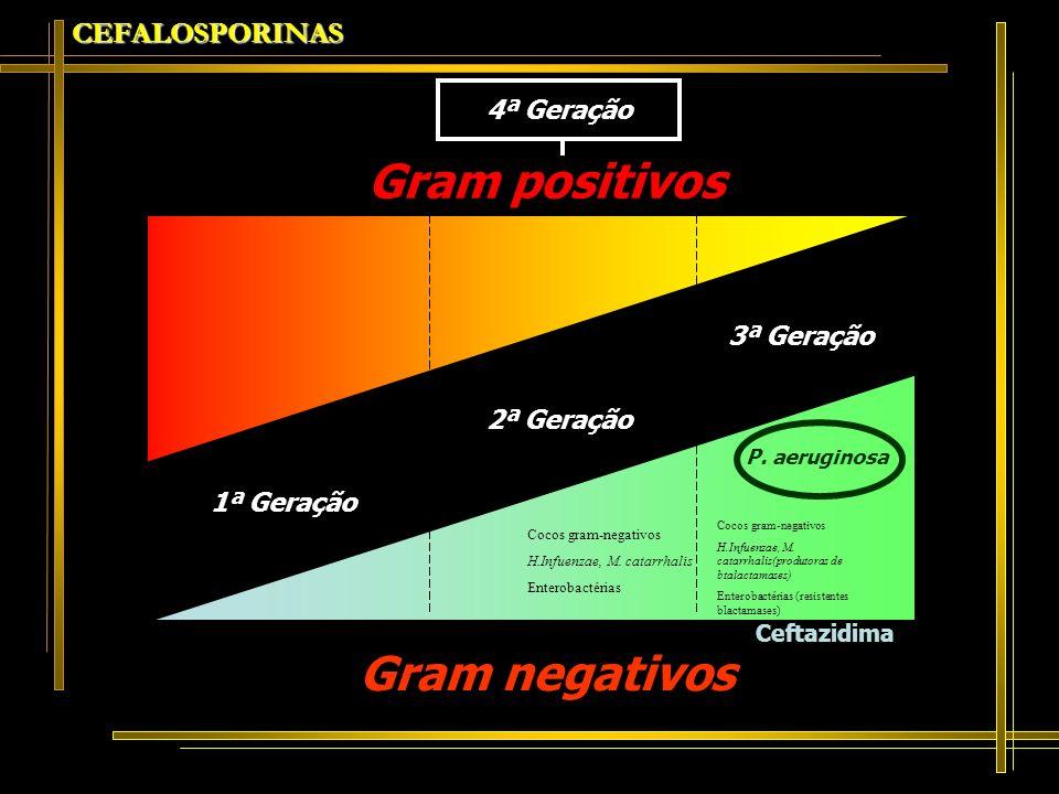 Gram positivos Gram negativos