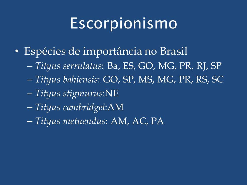 Escorpionismo Espécies de importância no Brasil