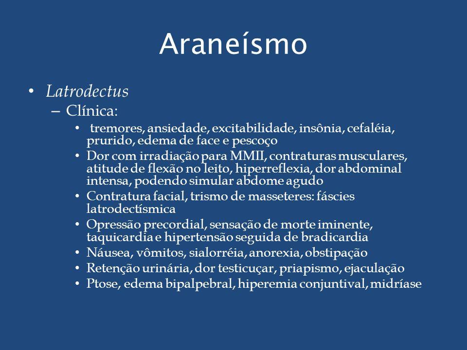 Araneísmo Latrodectus Clínica: