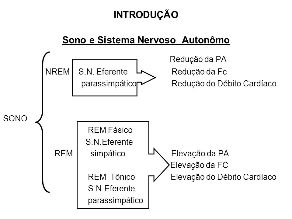 INTRODUÇÃO Sono e Sistema Nervoso Autonômo