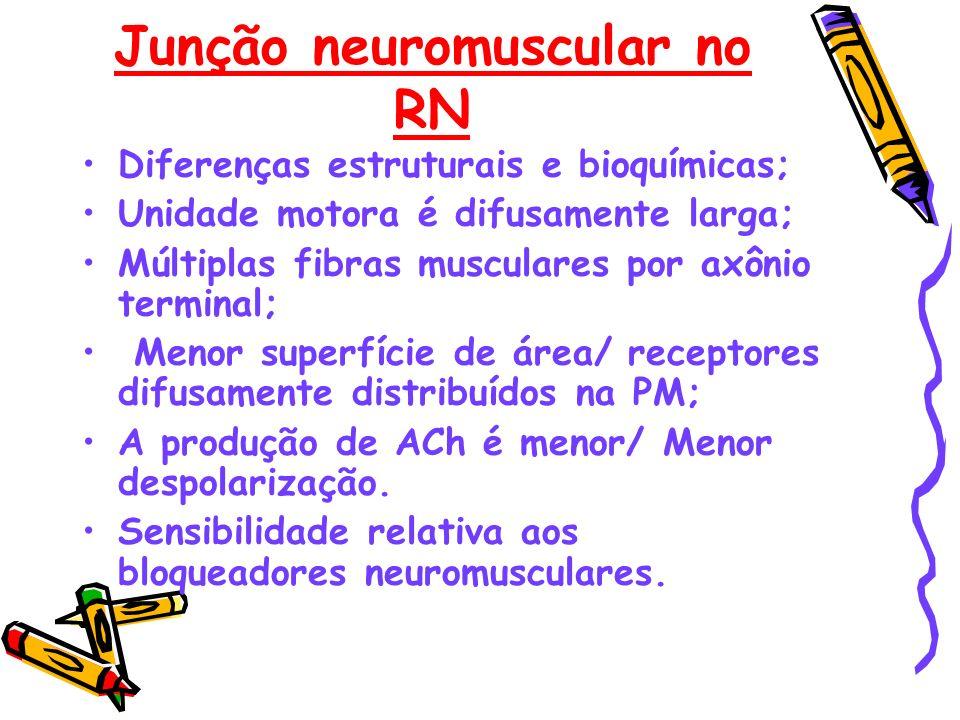Junção neuromuscular no RN