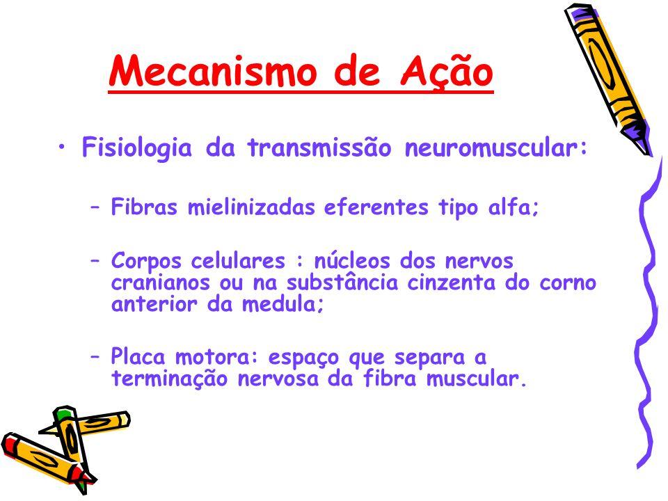 Mecanismo de Ação Fisiologia da transmissão neuromuscular: