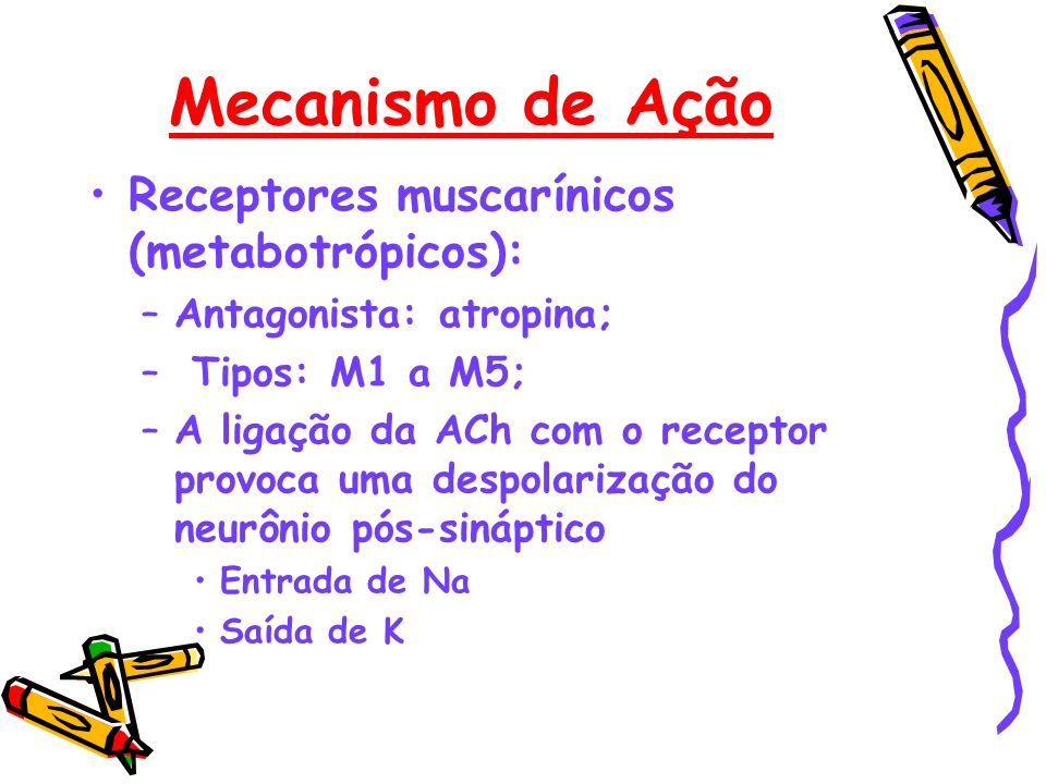 Mecanismo de Ação Receptores muscarínicos (metabotrópicos):
