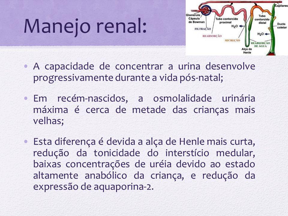 Manejo renal: A capacidade de concentrar a urina desenvolve progressivamente durante a vida pós-natal;
