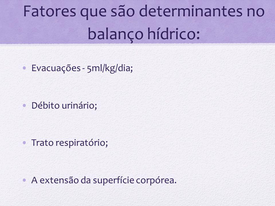 Fatores que são determinantes no balanço hídrico: