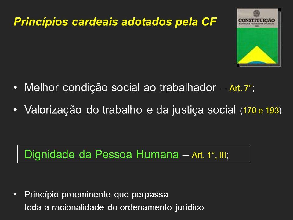 Princípios cardeais adotados pela CF