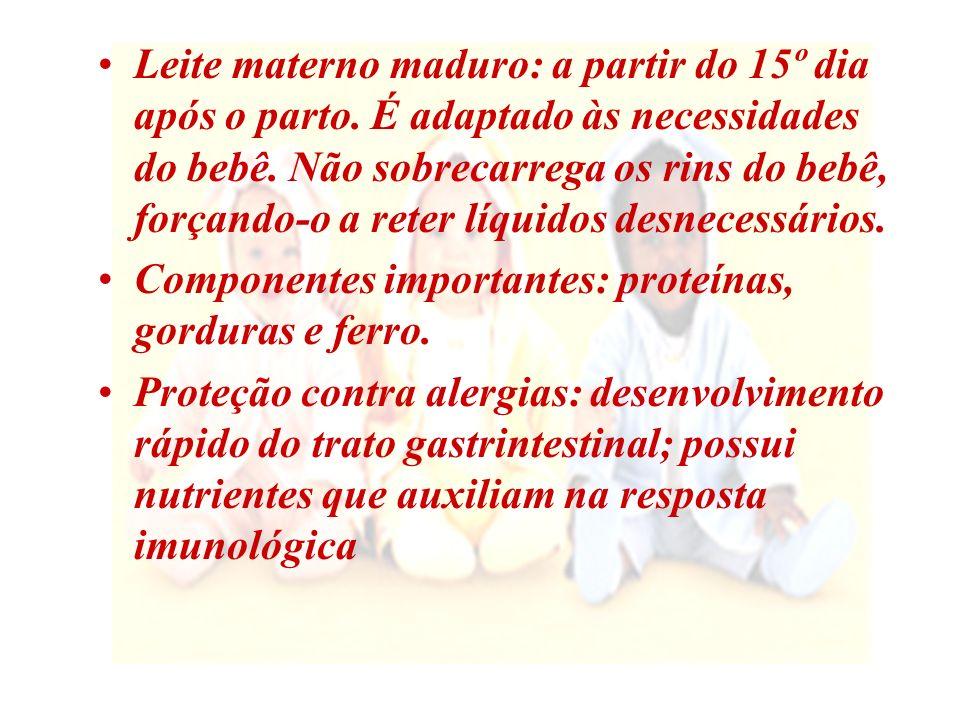 Leite materno maduro: a partir do 15º dia após o parto