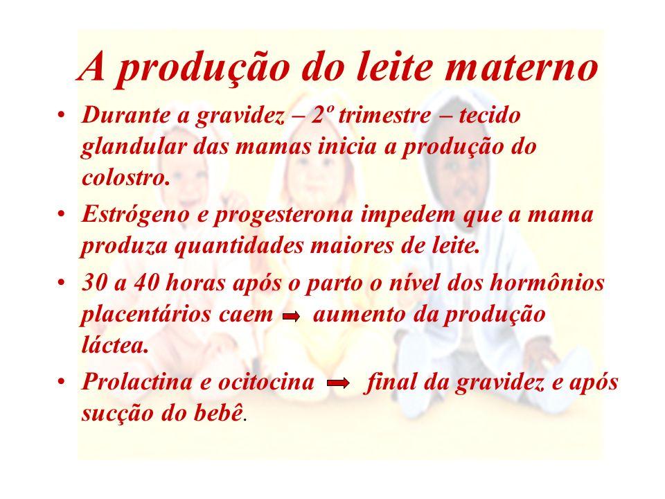 A produção do leite materno