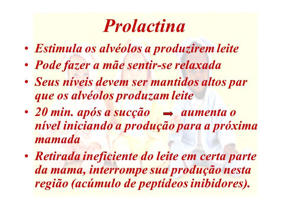 Prolactina Estimula os alvéolos a produzirem leite