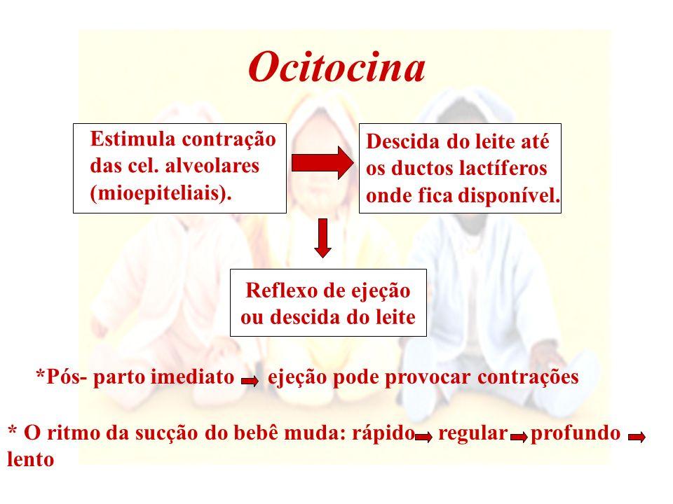Ocitocina Estimula contração Descida do leite até das cel. alveolares